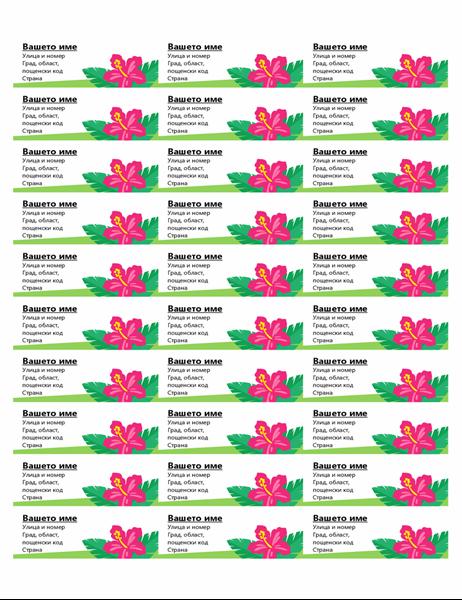 Тропически етикети (30 една страница)