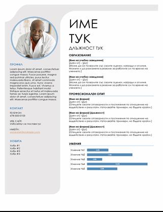 Синьо сиво CV