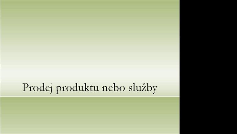 Prezentace produktu nebo služby