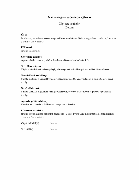 Zápis ze schůzky organizace (delší formulář)
