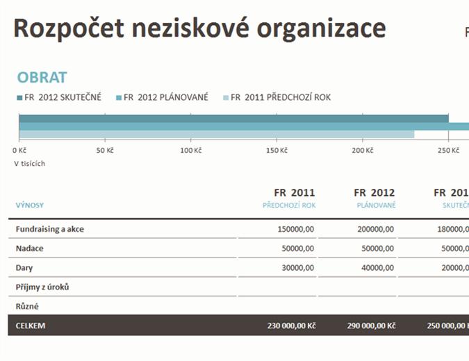 Rozpočet neziskové organizace