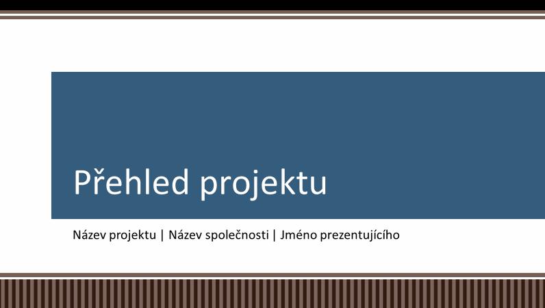 Prezentace s přehledem plánování obchodního projektu