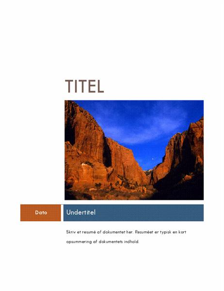 Virksomhedsrapport (Median-tema)
