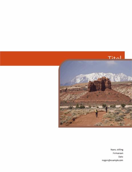 Forretningsrapport (grafisk design)