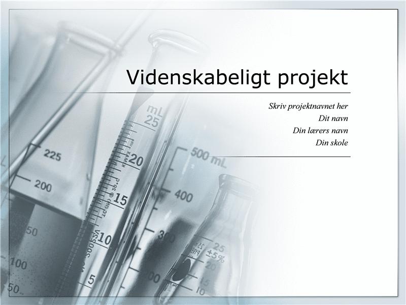 Presentation af et videnskabeligt projekt