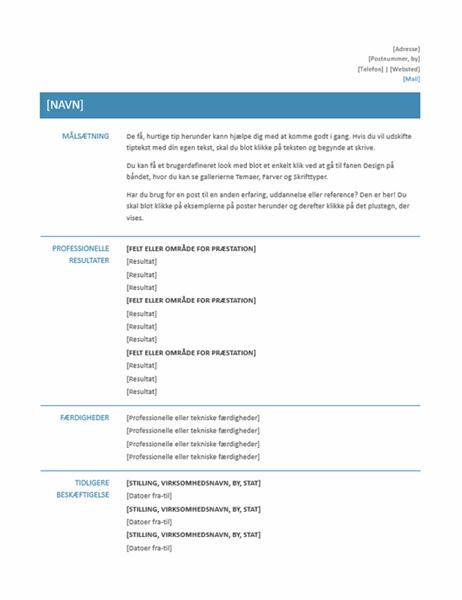 Funktionelt CV (Simpelt design)