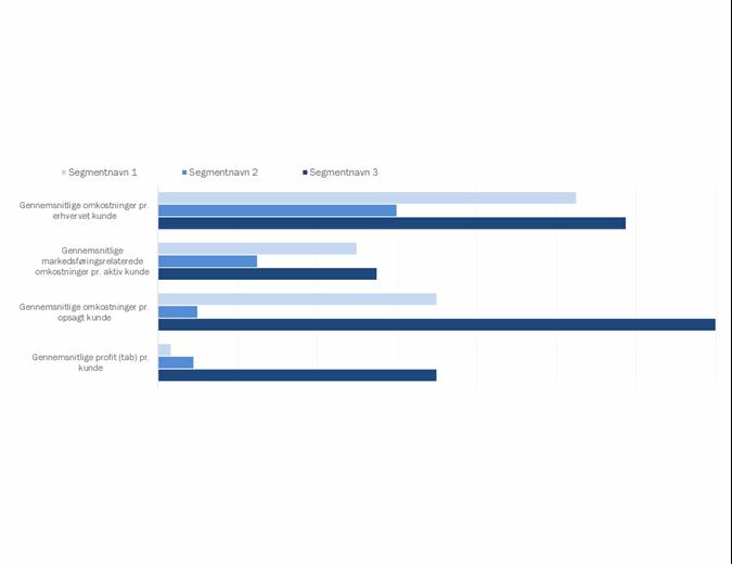 Kunderentabilitetsanalyse
