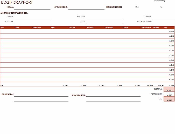 Udgiftsregnskab