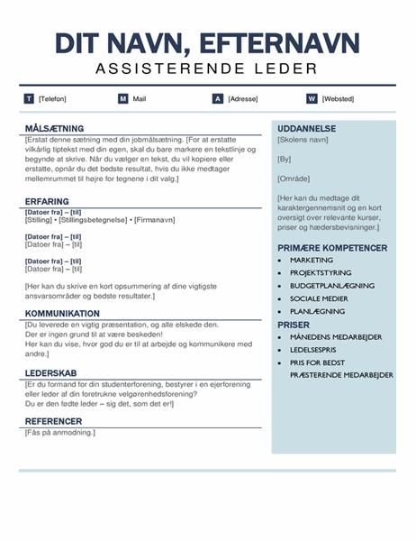 Organiseret, moderne CV