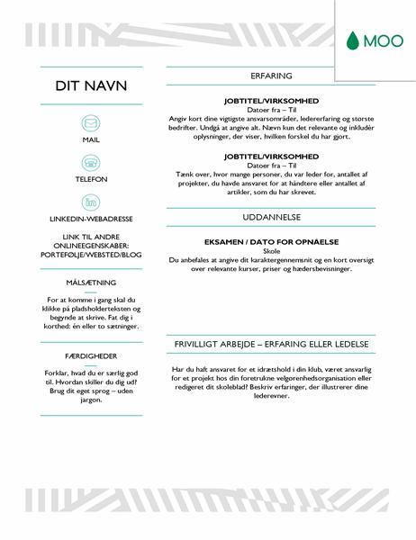 Kreativt CV – udformet af MOO