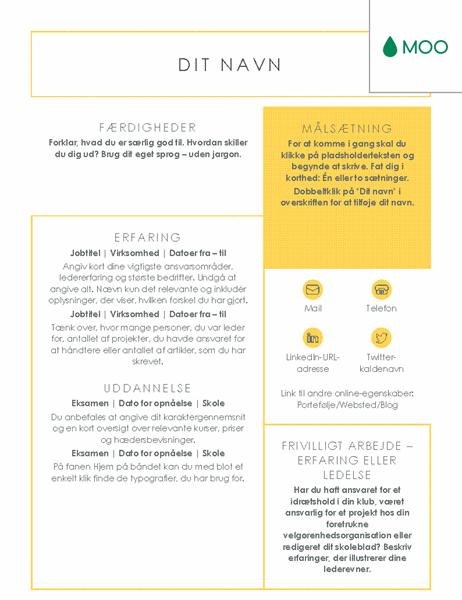 Rent og klart CV – udformet af MOO