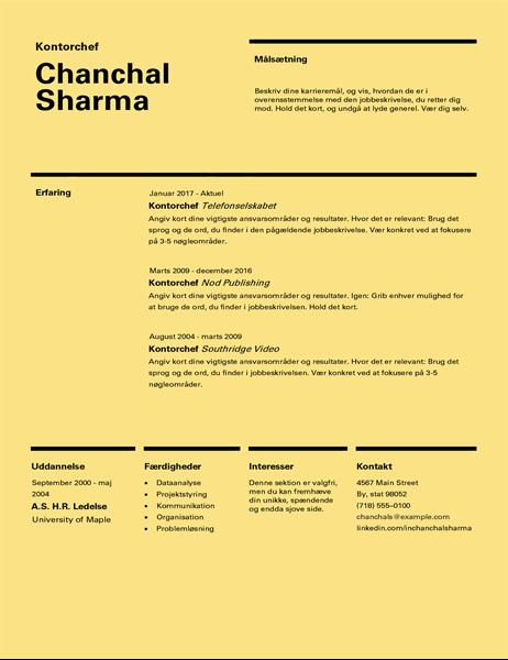 CV (schweizisk design)