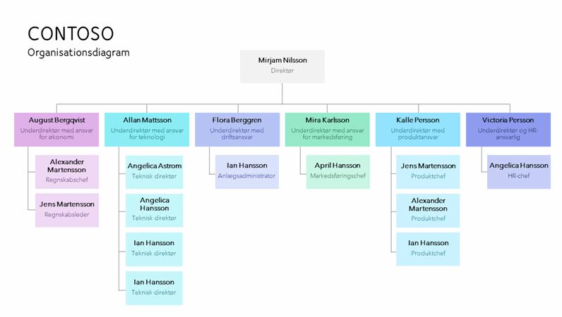 Farvekodet organisationsdiagram