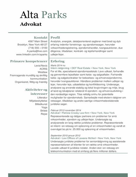 CV for advokater
