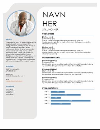 CV i blå og grå