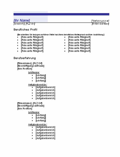"""Chronologischer Lebenslauf (Design """"Blaue Linie"""")"""