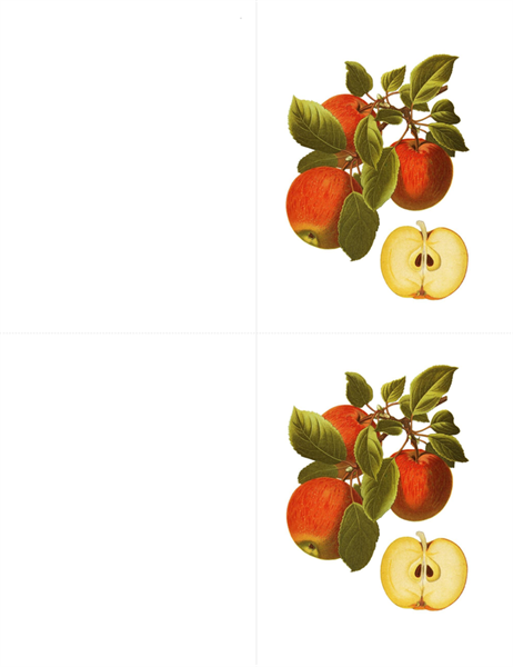 Botanische Grußkarten (10 Karten, 2 pro Seite)