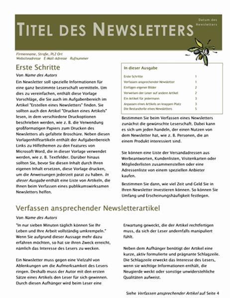 Unternehmensnewsletter (2 Spalten, 6 Seiten, Mailer)