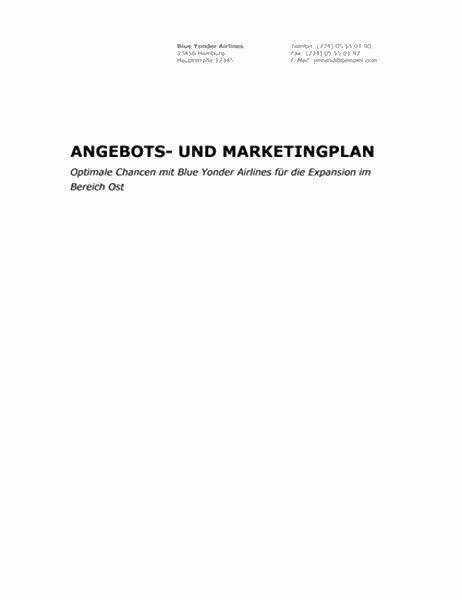 Geschäftsbericht (professionelles Design)