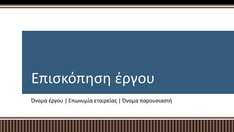 Παρουσίαση επισκόπησης σχεδιασμού επιχειρηματικού έργου