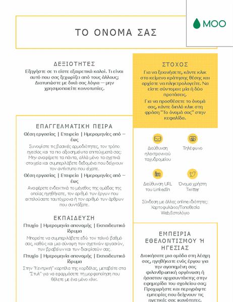 Κομψό και λιτό βιογραφικό σημείωμα, σχεδιασμένο από τη MOO