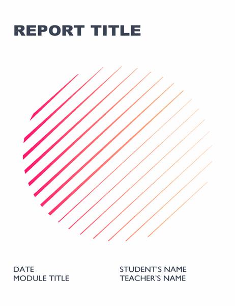 Geometric student report