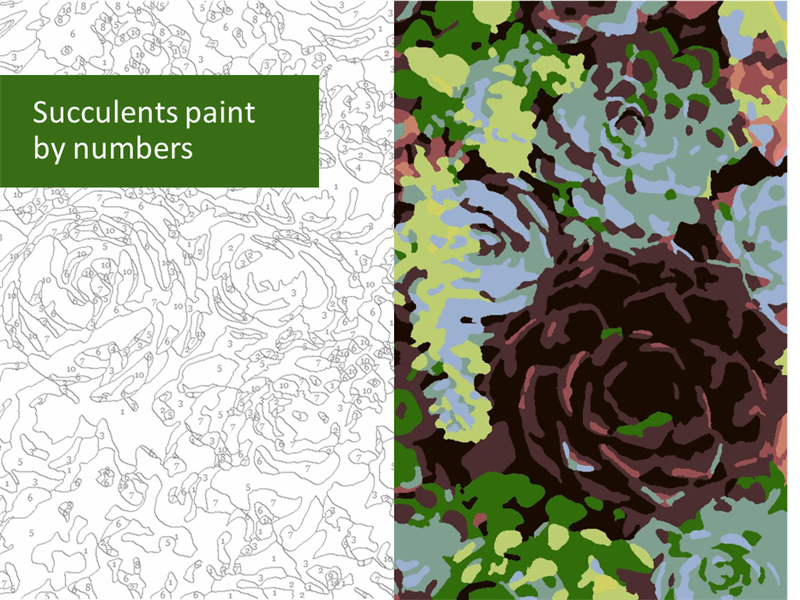 Succulents paint by numbers