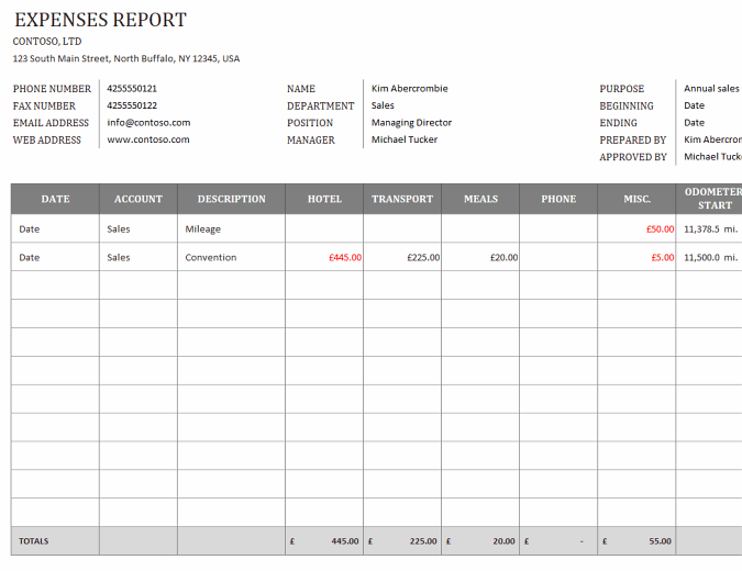 Business expenses report