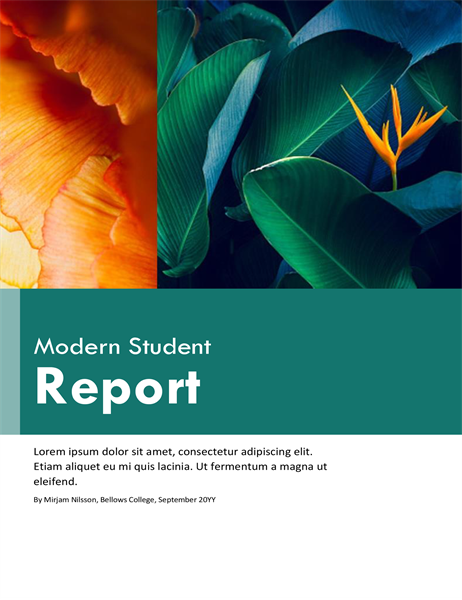 Colourful student report