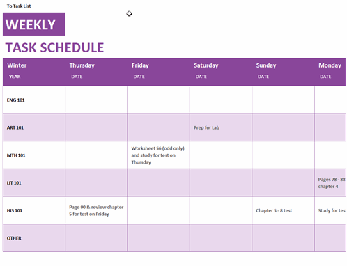 Weekly task schedule