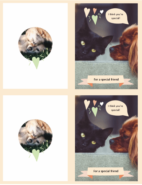 Kittens and puppies every day card