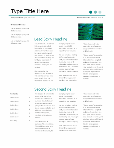 Newsletter (Dots design, 6 pages)