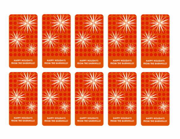 Holiday gift tags (mod snowflake design, 10 per page)