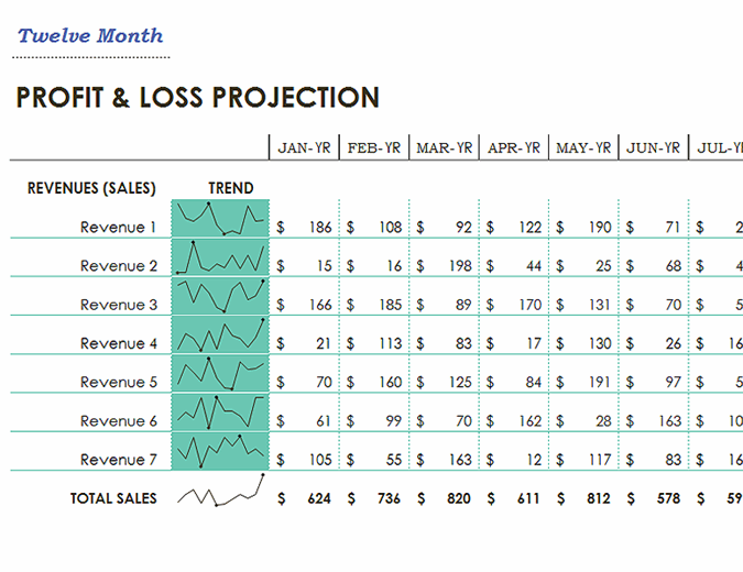 Profit loss statement