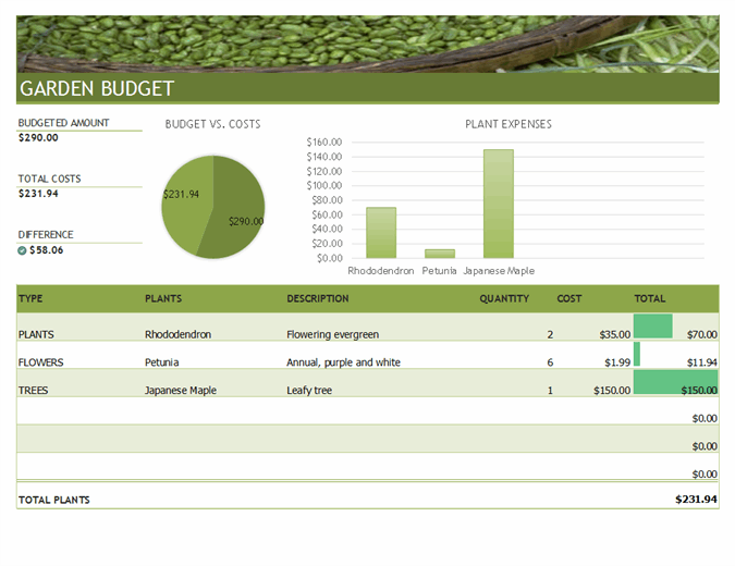 Budget for garden and landscaping