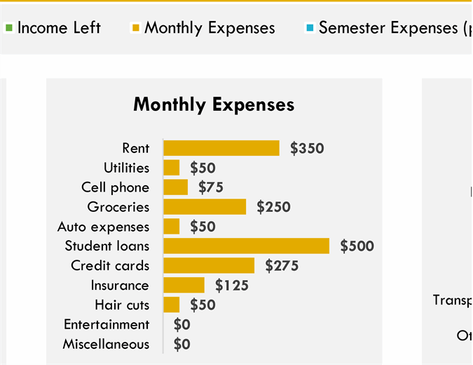 Monthly college expense budget