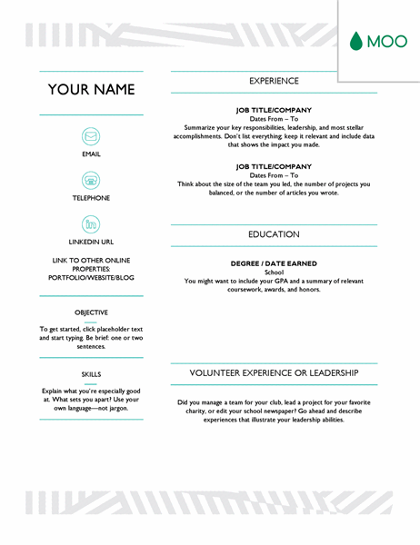 Professional Resume Template With Photo Sales