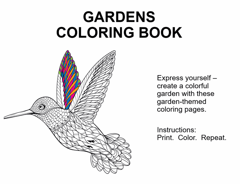 - Shapes Coloring Book