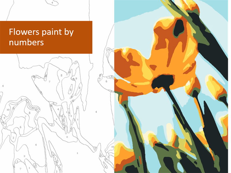 Flowers paint by numbers