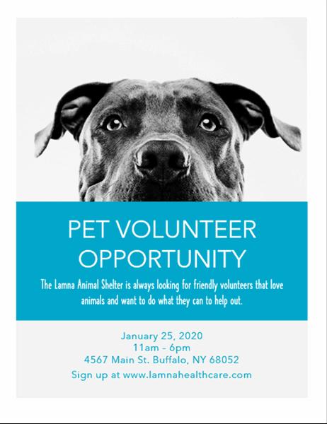 Pet volunteer opportunity flyer