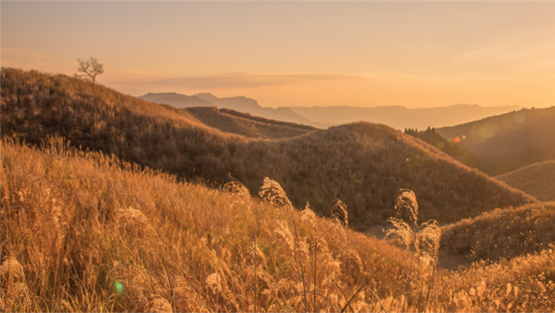 Scenic Facebook banners
