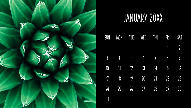 Succulents monthly calendar