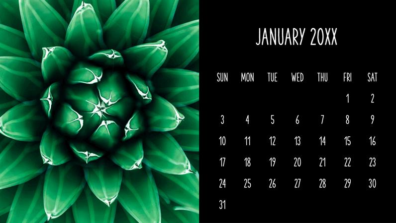 Succulents monthly calendar