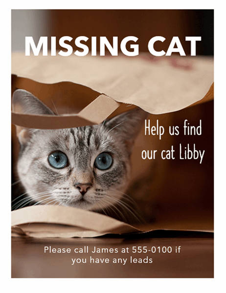 Missing cat flyer
