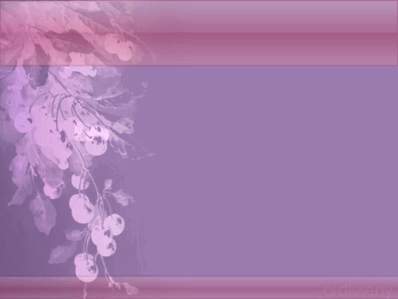 lila elegante