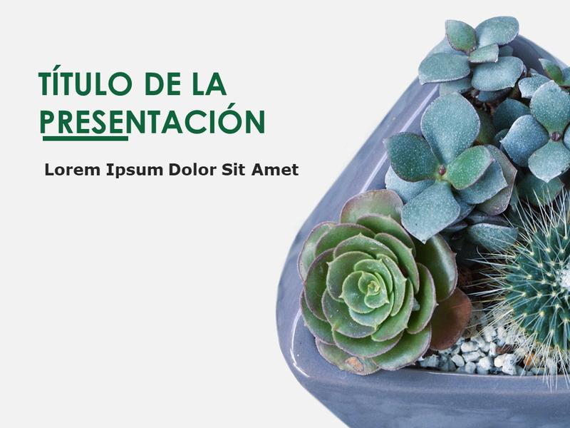 Diapositivas de diseño de botánica