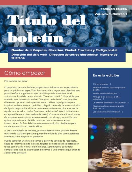 Boletín para la empresa (2 col., 6 páginas, para correo postal)