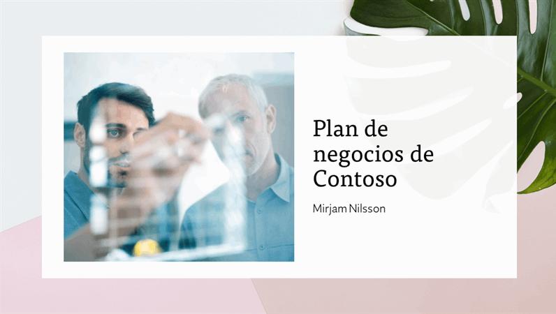 Presentación De Plan De Negocios Powerpoint
