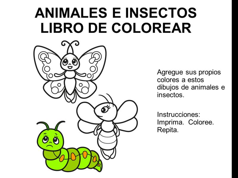 Libro para colorear animales y insectos