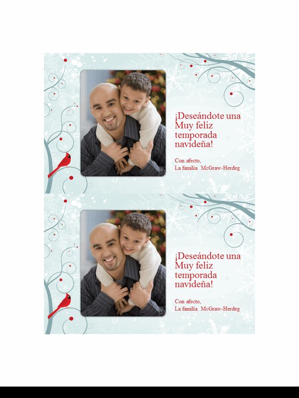 Tarjetas fotográficas navideñas de copos de nieve (dos por página)